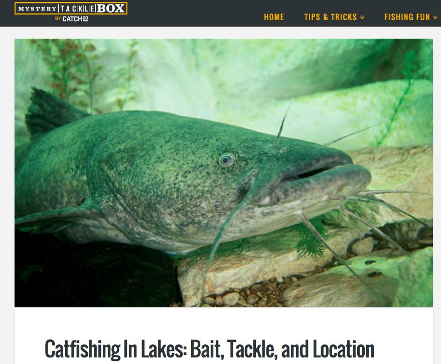 Mystery tackle box catfishing in lakes threewordpress for Fishing mystery box