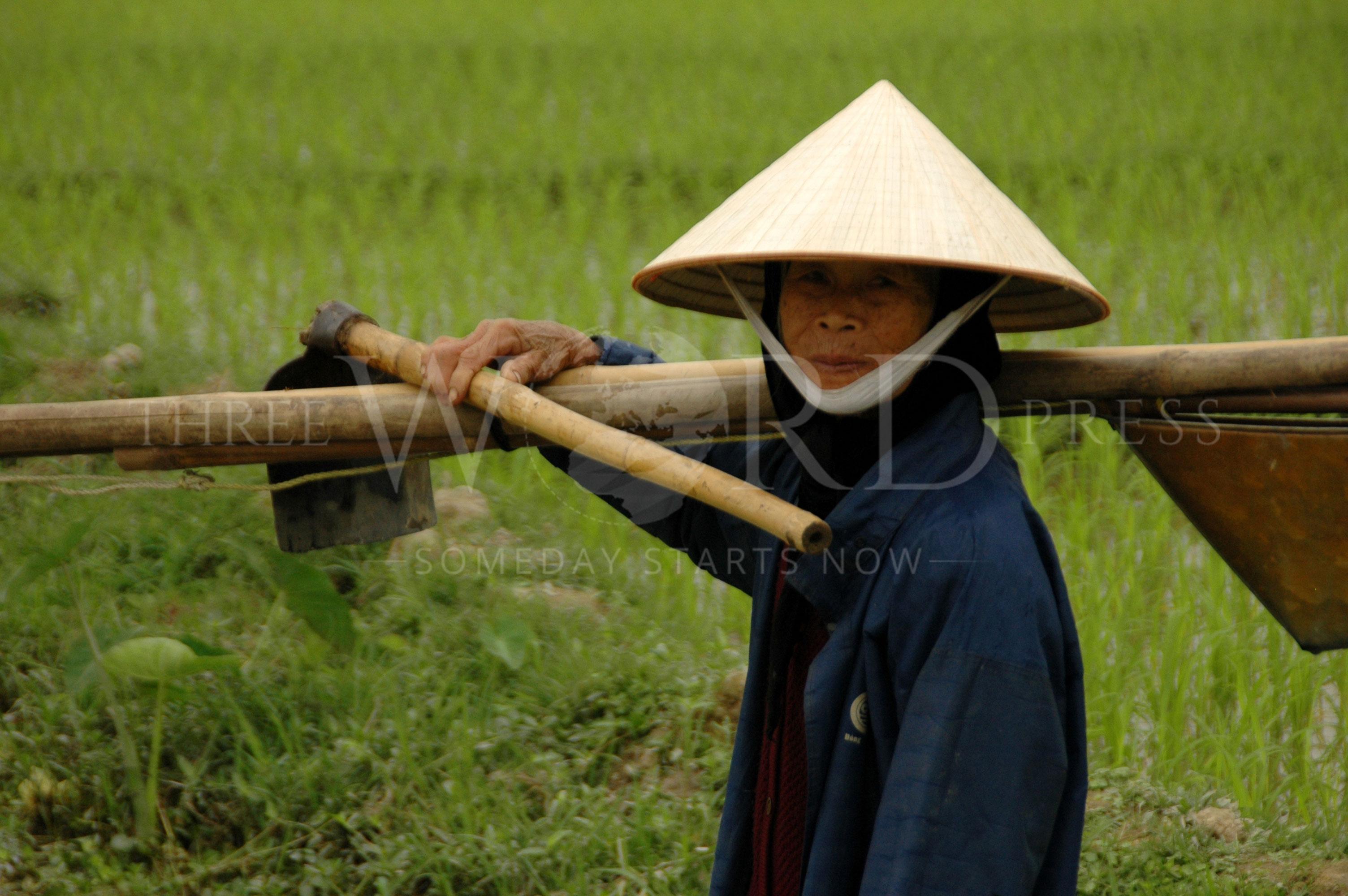 Vietnam – TWP Image